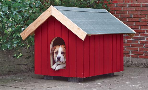 Ist Eine Hundehutte Sinnvoll Tiere Im Garten Bauen Und Wohnen