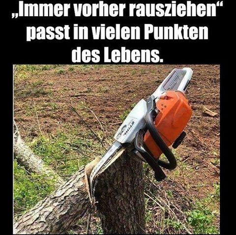 Baum Lustig